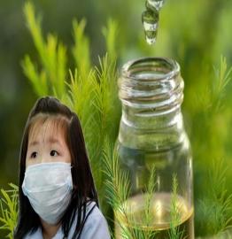 """Sử dụng tinh dầu thiên nhiên tăng khả năng ngăn ngừa virus Corona và cách chọn lựa tinh dầu """"chuẩn chất lượng""""?"""