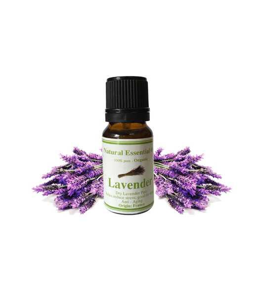 Tinh dầu Lavender 10ml