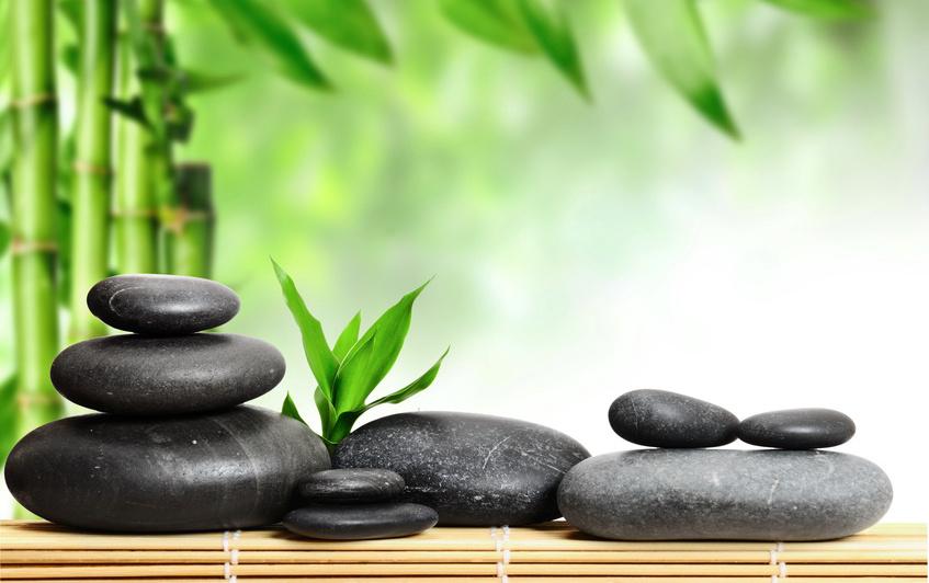 Nâng cấp dịch vụ massage tại spa với nguồn năng lượng tuyệt vời từ đá nóng massage hình ảnh 8